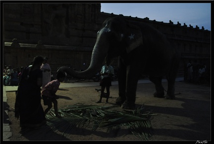 05-Tanjore 066