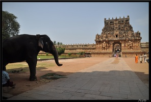 05-Tanjore 169